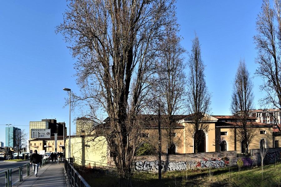Populus Italica 1 Mar18a